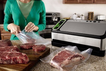 FoodSaver V4840 2-in-1 Vacuum Sealer review (1)