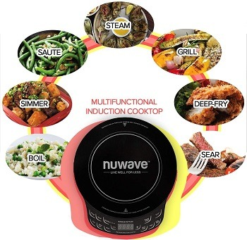 NuWave Precision Tiny Hot Plate Review