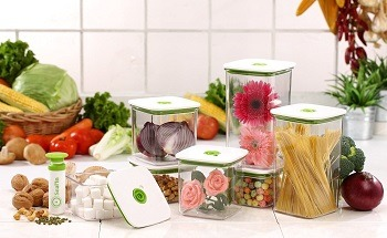 Seal'In Food Storage Vacuum Containers Review