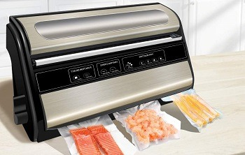Fresh World Automatic Sealer Review