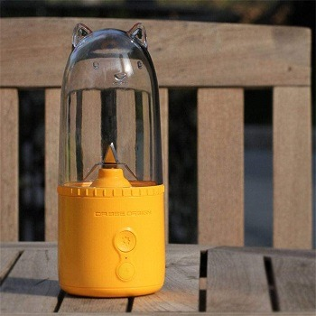 Household Portable SHUI Juicer Review