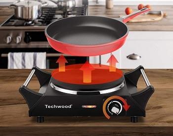 Techwood Single Burner Review