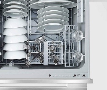 Fisher Paykel DD24DDFTX9N Review