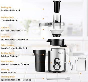 FayyFian Juicer Machine