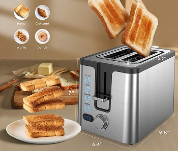 Homosome 2-Slice Toaster