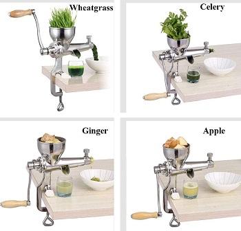 Moongiantgo Apple JuicerReview