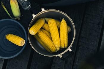 corn in the pot
