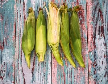 how do you freeze fresh corn