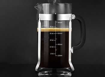 Best French Press Hot And Cold Coffee Maker