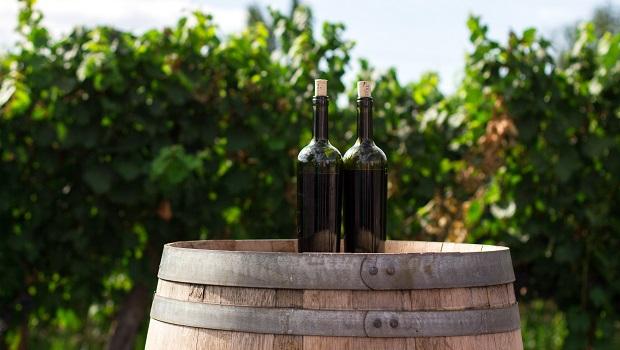 Croatian Wines - Wine Bottles