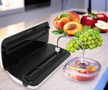 Best Home Vacuum Food Sealer