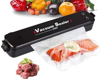 Best Portable Vacuum Sealer
